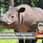SumatranRhinoInterview