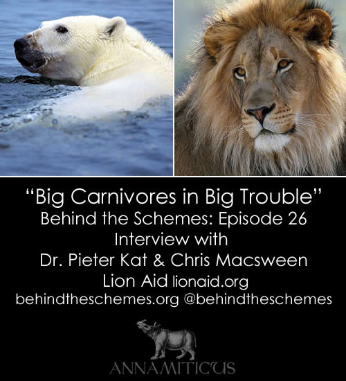 In Episode 26, we're talking about big carnivores in big trouble with Dr. Pieter Kat and Chris Macsween from Lion Aid.