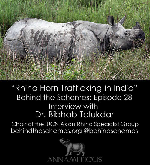 In Episode 28, we're talking about rhino horn trafficking in India with Dr. Bibhab Talukdar, Chair of the IUCN Asian Rhino Specialist Group.