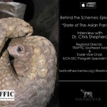 In Episode 31, we're talking about the state of the Asian pangolin.